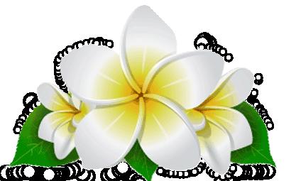 thai massasje gjøvik green thai massasje stavanger